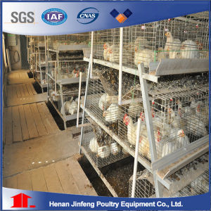 H Type Used Chicken Caeg for Sale/ Chicken Cage for Sale pictures & photos