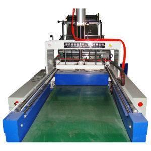 High Speed Cold Cutting Bag Maker (SSC-600) pictures & photos