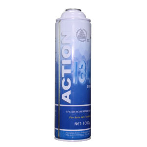 Action Refrigerant R134A, Substitutes