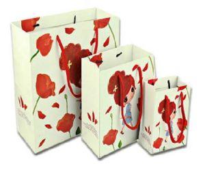 Fashion Gift Paper Bag Printing