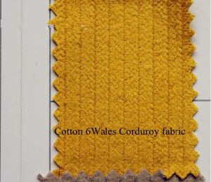 6 Wales 100% Cotton Corduroy Fabric pictures & photos