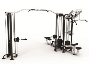 Bodytone Fitness Equipment Jungle Machine (SC23) pictures & photos