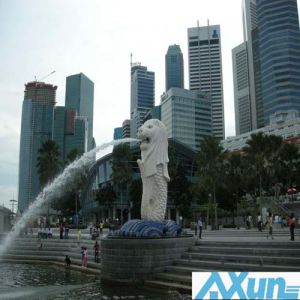 Fast Courier Service Express From China to Singapore pictures & photos