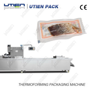 Fish Thermoforming Packaging Machine/Thermoforming Machinery/Automatic Vacuum Packer pictures & photos