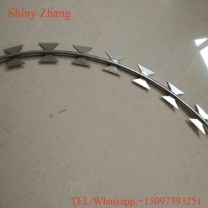 Wholesale Stainless Razor Barbed Wire at Low Price pictures & photos