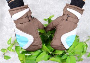 Kids Ski Glove/Kids′ Five Finger Glove/ Children Ski Glove/Children Winter Glove/Detox Ski Glove/Okotex Glove/Mitten Ski Glove/Mitten Winter Glove pictures & photos