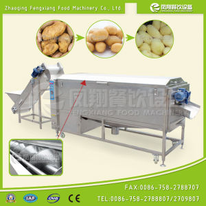 Lxtp-3000 Automatic Carrot Potato Washing Peeling Machine (2-3T/h) pictures & photos