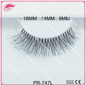 Private Label Human Hair False Eyelash 747 Style Own Brand Eyelashes pictures & photos