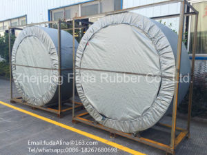 China Wholesale High Quality White Nylon Conveyor Belts and High Quality Ep Nn Rubber Conveyor Belt pictures & photos