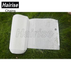 Flush Grid Radius Modular Belt (Har1100) pictures & photos