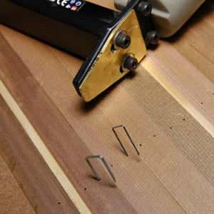 Fasco 84 Series Staples for Carpentry and Furnituring pictures & photos