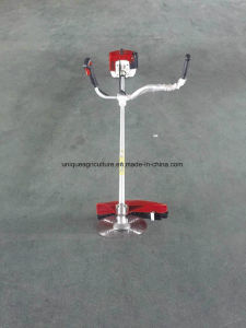 1.6kw 2.2HP Gasoline Brush Cutter, Grass Trimmer Fs200 with High Quality pictures & photos