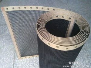 PTFE Mesh Conveyor Belt for Food Processing pictures & photos