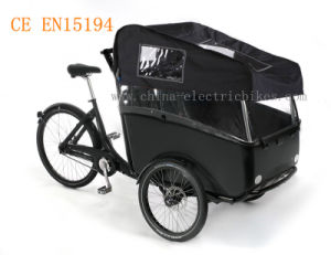 Electric Cargo Bicycle in Family with Seatbelts and Top (DT-038) pictures & photos