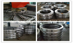 Excavator Slewing Bearing Swing Bearing (Hitachi, Kobelco, Komatsu, Caterpillar) pictures & photos