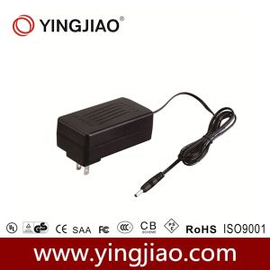 40W DC Power Supply with Ce pictures & photos