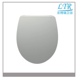 UK Wc Duroplast Custom Made Toilet Seat pictures & photos