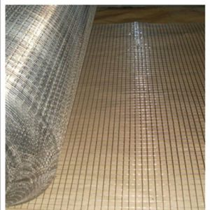 Stainless Steel Welded Wire Mesh for Sale pictures & photos