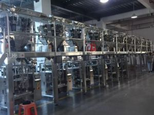 4 Side Seal Packaging Machine pictures & photos
