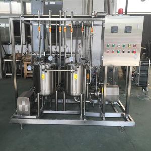 1000L 2000L Water Melon Peach Orange Apple Juice Sterilizer pictures & photos