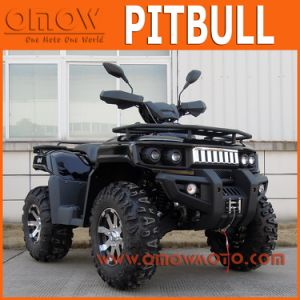 3000W 4X4 4X2 Shaft Drive Utility Electric ATV Quad Bike pictures & photos