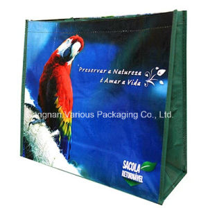 Custom Design PP Woven Shopping Tote Bags pictures & photos