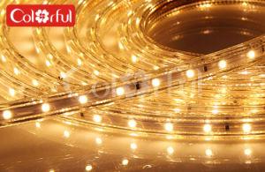 AC220V-240V Flexible High Voltage SMD5050 LED Strip pictures & photos