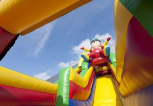 2017 Inflatable Toy/Clown Double Lane Slide (T4-213) pictures & photos