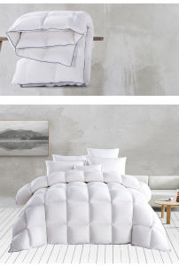 Gueranteed Quality Luxury Goose Down Quilt pictures & photos