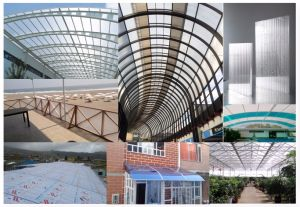 4mm Polycarbonate Sheets Polycarbonate Roofing Sheets PC Hollow Sheets pictures & photos