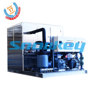 Hot Sale 10t Plate Ice Making Machine pictures & photos