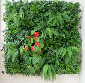 Vertical Green Living Wall Grass for Room Decoration pictures & photos