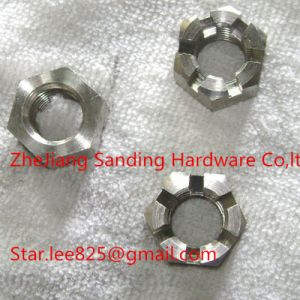 Wholesales DIN935 Stainless Steel Hex Slotted Nut pictures & photos