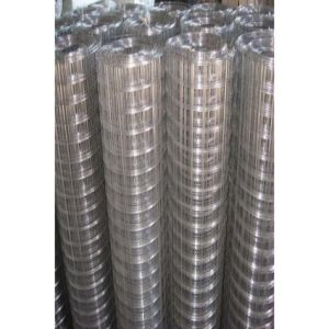 Hot Dipped Coated Electro Galvanized Welded Wire Mesh pictures & photos