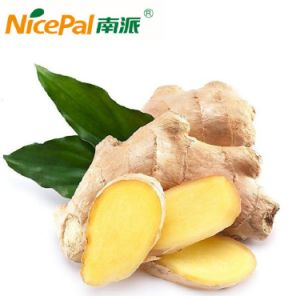 Spray Dried Natural Ginger Vegetable Juice Powder pictures & photos