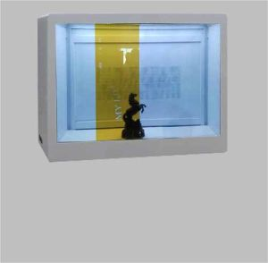 47′′ Transparent LCD Display Cabinet with 1920X1080 Resolution pictures & photos