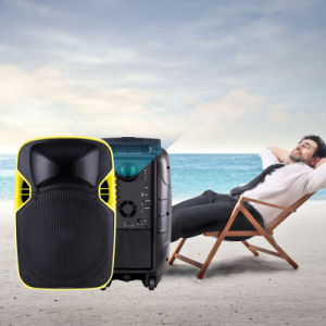 Best Seller 12 Inch Guitar Karaoke Mobile Trolley Projection Speaker pictures & photos