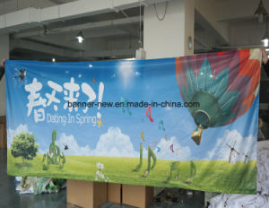 Shiny Full Color Polyester Fabric Banners (SS-SF-92) pictures & photos