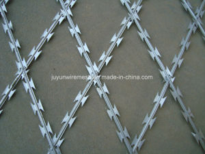 Concertina Razor Wire/Galvanized Concertina Razor Wire/Hight Security Razor Barbed Wire pictures & photos