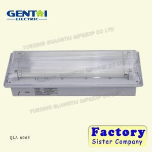 Fire Retardant ABS Non-Maintained Fluorescent Tube Emergency Light pictures & photos
