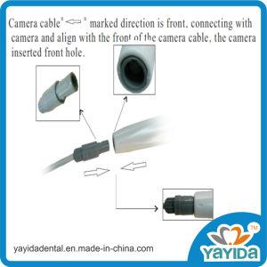 2.0 Mega Pixels CMOS USB Dental Camera pictures & photos