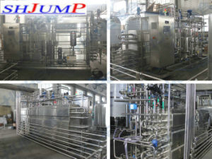 Large Factory Papaya Juice Processing Line pictures & photos