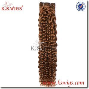 Double Drawn 100% Human Virgin Remy Hair Weft pictures & photos