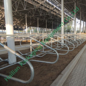 3mm Hot DIP Galvanized Pipe Livestock Free Stall pictures & photos