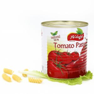 Canned Tomato Paste with 800g pictures & photos