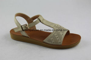 Cool T-Strap Flat Ladies Sandals for New Fashion pictures & photos