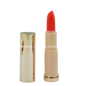 OEM Matte Color Easycoloring Lipstick with Your Brand