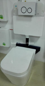 Australian Standard Sanitary Ware Watermark and Wels Approval Floor Mounted Toilet Bowl (6015) pictures & photos
