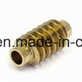 Locknut Bolt & Nut pictures & photos