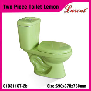 Porcelain Siphonic Floor Mounted Washroom Colourfull Two Piece Water Closet
